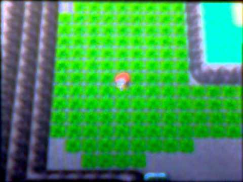 How to catch Larvitar in pokemon Diamon/Pearl with poke radar