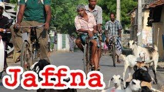 Jaffna Town: Travel Video of Northern Tamil, Sri Lanka (யாழ்ப்பாணம்)