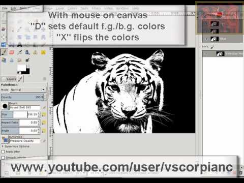 GIMP Tutorial - Use Channel Mask to Select Hair and Fur by VscorpianC
