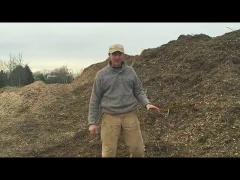 Building Soil with Composted Wood Chips