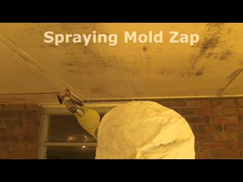 How To Remove Porch Ceiling Mold.wmv