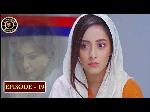 Download Haiwan Episode 19 - Top Pakistani Drama
