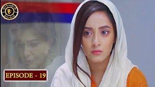 Haiwan Episode 19 - Top Pakistani Drama