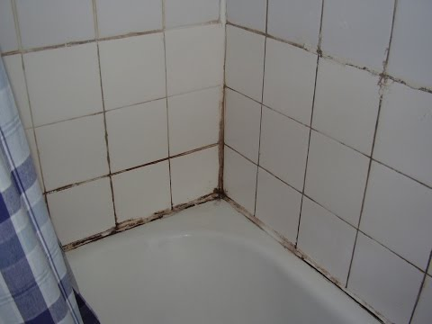 How to cure damp and mould in the bathroom.