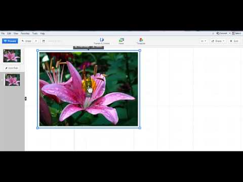 How to Add an Image to Prezi