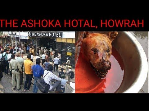Xxx Mp4 Police Raid At The Ashoka Hotel Howrah Dogs Meat Was Found 3gp Sex