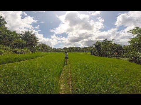 THE PHILIPPINES | CEBU-NEGROS-BOHOL-PANGALO-PALAWAN-CORON-LUZON | 2018 | GoPro | Travel