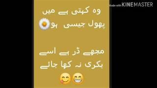 Funny Poetry Quotes In Urdu 2