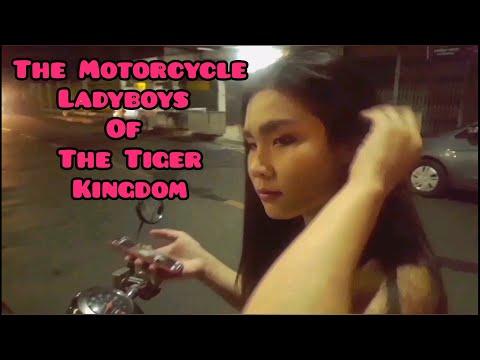 Xxx Mp4 The Motorcycle Ladyboys Of The Tiger Kingdom 3gp Sex