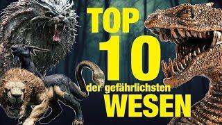TOP 10 der GEFÄHRLICHSTEN TIERWESEN aus Harry Potter 💀