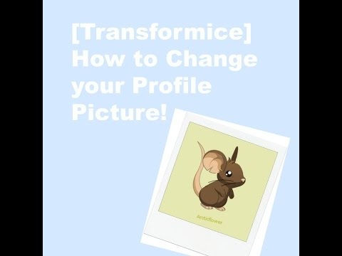 [Transformice] How to Change Your Profile Picture!