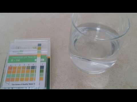 Testing the pH of tap water with Simplex Health pH test strips