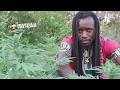 Zamunda - Get High [Video 2017]