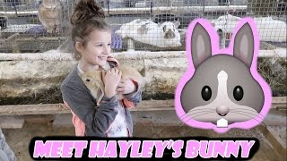 Meet Hayley's Bunny 🐰 (WK 324.4) | Bratayley