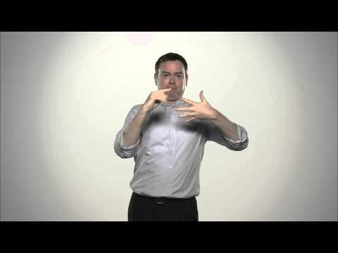 The Court of Appeal Referendum - Irish Sign Language