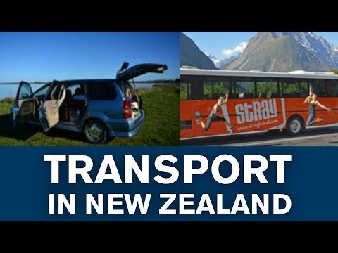 Travel in New Zealand - How to get around as a backpacker! (Tutorial)