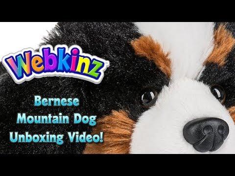 Webkinz Bernese Mountain Dog Unboxing - NEW Pet November 2017!