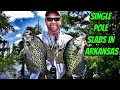 Jigging cypress trees for crappie on Lk Conway Ar-Krappie Kings S2 eps01