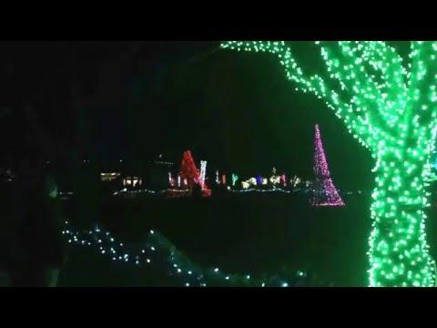 Detroit Zoo Christmas Lights.