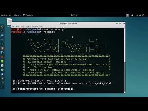 Kali Linux: How to Find  Bugs/ Vulnerabilities in a Website