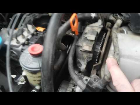 DIY - 1999 Honda Accord Timing Belt Inspection - How to