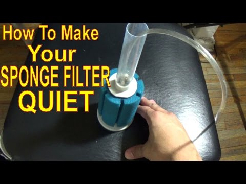 How To Make Your Sponge Filter Quiet