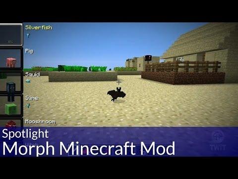 Spotlight: Morph Minecraft Mod