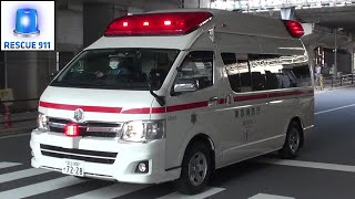 Ambulance Tokyo Fire Department (collection)