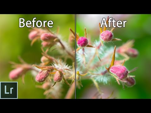 My Whole Uncut Thought Process When Editing A Photo in Lightroom (Test Of A New Format)