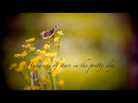 Video Meme | Butterflies for Mom