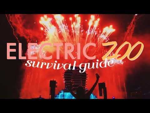 HOW TO SURVIVE E ZOO / MY EXPERIENCE: ELECTRIC ZOO 2016