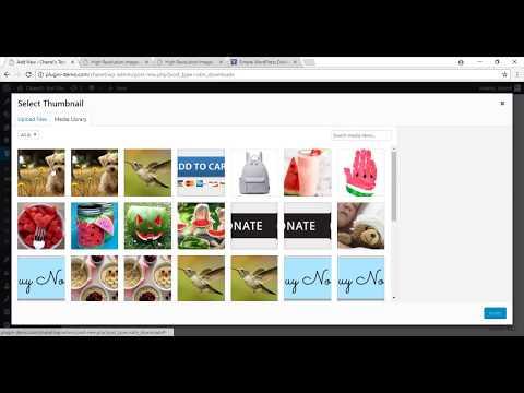 WordPress Simple Download Monitor Plugin Usage