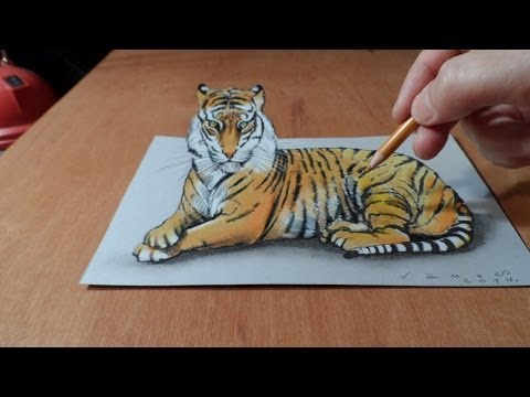 Drawing  3D Tiger - How to Draw a Tiger  - Trick Art on Paper