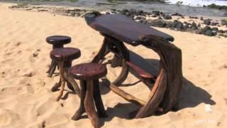 Artist Creates Intricate Driftwood Sculptures