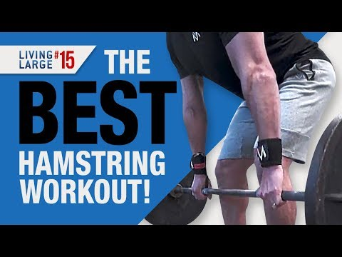 4 BEST Hamstring Exercises You Need To Do (ADVANCED HAMSTRING WORKOUT)