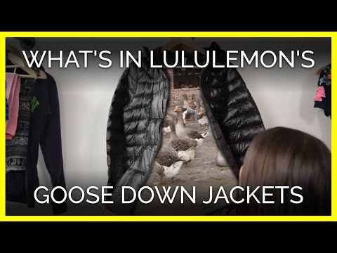 You'll Never Guess What's Hiding in lululemon's Goose Down Jackets