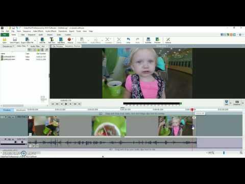 Videopad Video Editor Software | Trim/Cut Tutorial