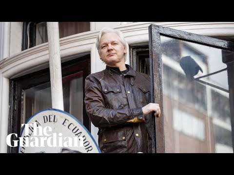 Superfans, boiled sweets and Pamela Anderson: ​six years spying on Julian Assange