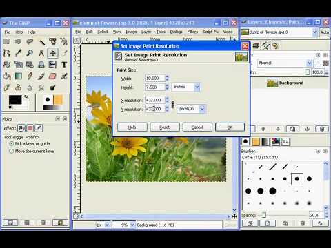 Image resolution and print size in the GIMP