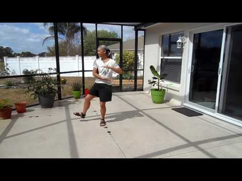 Tai Chi 24 Form -- Yang Style (for Beginners)
