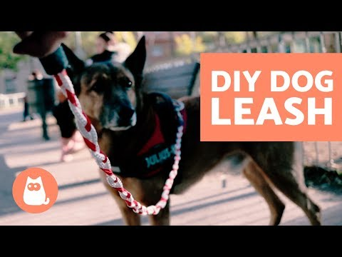 DIY Rope Dog Leash - VERY EASY!!