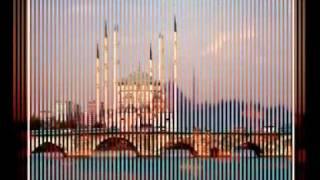 Meri Umar Madine De Tibiyaan di by arslan shahid +923076161601