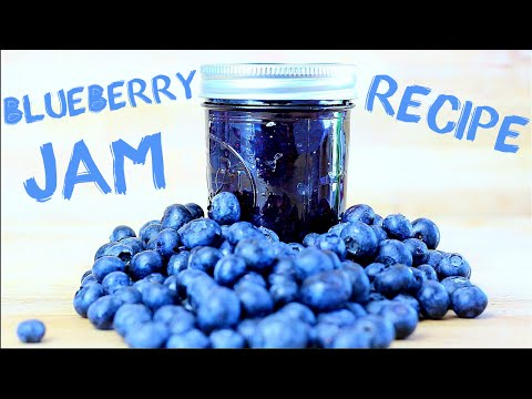 EASY BLUEBERRY JAM RECIPE