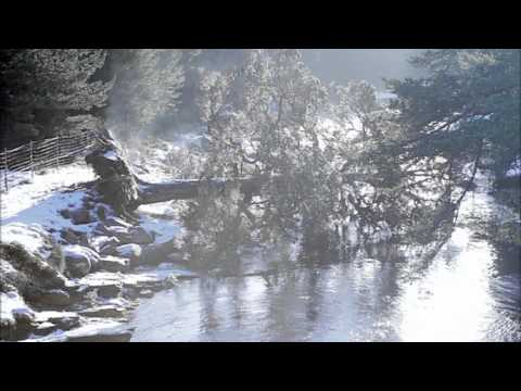 Winter stories: Restaurant Rescue - British Gas