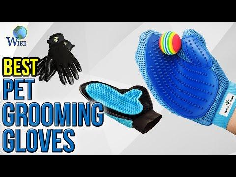 10 Best Pet Grooming Gloves 2017