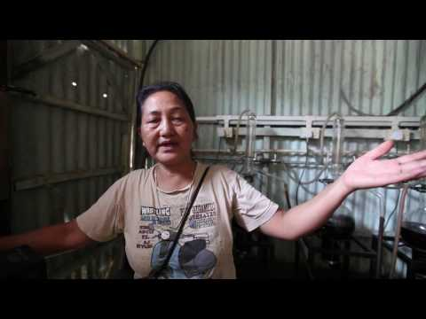 Weaving Dreams in Mizoram