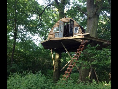 Building a Tree House in the Woodlands