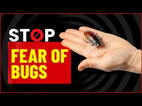 How to remove bug phobia with hypnosis comedy hypnotist