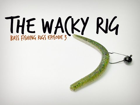 The Wacky Rig - Bass Fishing Rigs Series