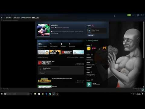 Steam Trade BOT to level your account